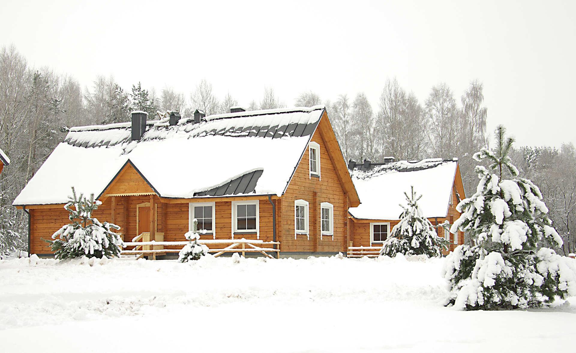 Svečių kaimas žiemą | Kernavės bajorynė